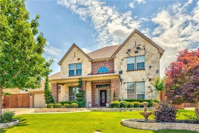 Grand Prairie Single Family Home For Sale: 6831 Promontory Drive