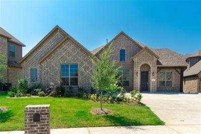 Rockwall Single Family Home For Sale: 924 Hunters Creek Drive