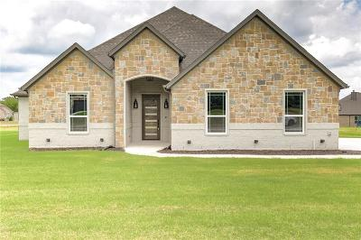 Parker County Single Family Home For Sale: 160 Lavender Lane
