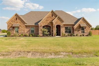 Fort Worth Single Family Home For Sale: 1017 Durango Springs Drive