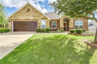 Arlington Single Family Home For Sale: 2506 Mesa Glen Drive
