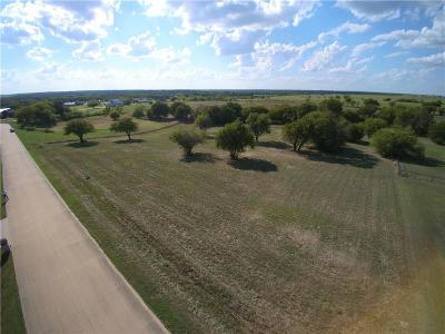 Denton County Residential Lots & Land For Sale: 13013 Cartwright Trail