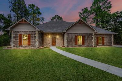 Athens Single Family Home For Sale: 5396 Grand View Drive