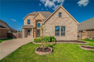 Grand Prairie Single Family Home For Sale: 2956 Benissa
