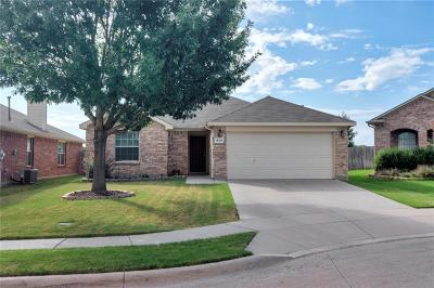 Fort Worth Single Family Home Active Option Contract: 14216 Polo Ranch Street