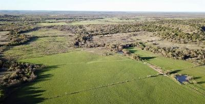 Stephenville Residential Lots & Land For Sale: 2549 County Road 124