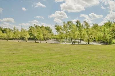 Aledo Single Family Home For Sale: 328 Scenic View Drive