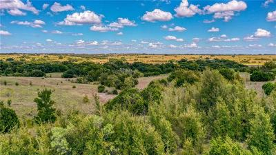 Erath County Farm & Ranch For Sale: Tbd E State Highway 6