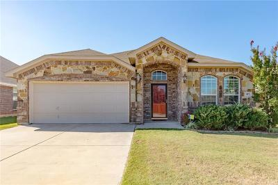 Parker County Single Family Home For Sale: 917 Jodie Drive