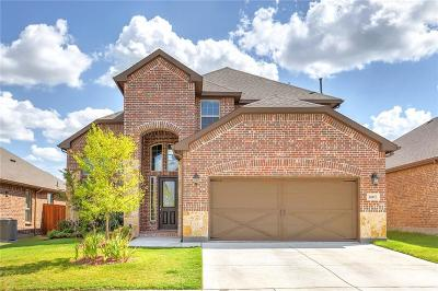 Aledo Single Family Home For Sale: 14817 Star Creek Drive