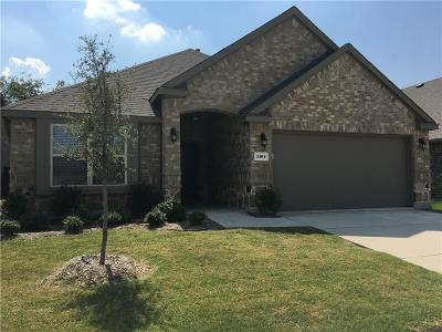 Little Elm Single Family Home For Sale: 1104 Lake Sierra Way