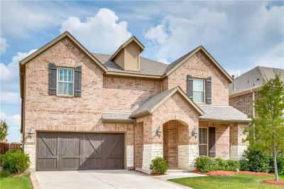 Irving Single Family Home For Sale: 7304 Clementine Drive