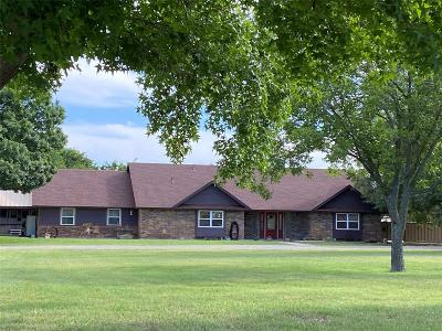 Parker County Single Family Home For Sale: 250 Meadow Brook Court