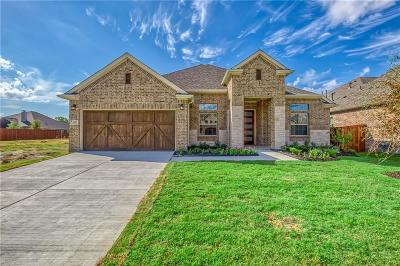 Mckinney Single Family Home For Sale: 804 Winter Creek Drive