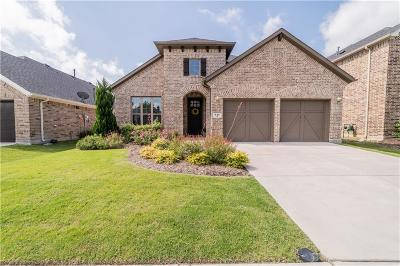 Little Elm Single Family Home For Sale: 836 Sandbox Drive