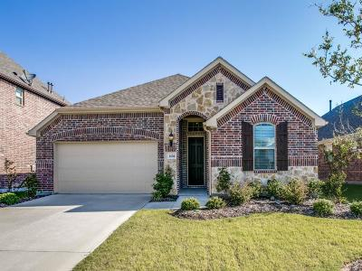 McKinney Single Family Home For Sale: 1404 Caney Creek Lane