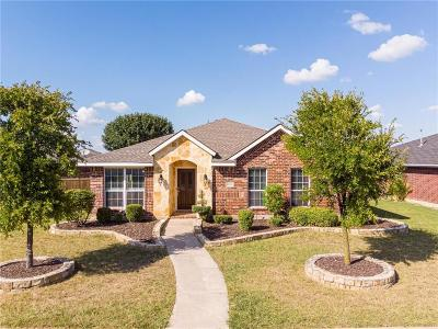 Frisco Single Family Home For Sale: 3960 Palace Place