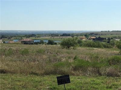 Aledo Residential Lots & Land For Sale: 1 High View Drive