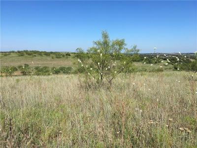 Aledo Residential Lots & Land For Sale: 2 High View Drive