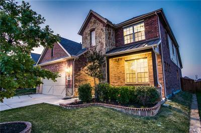 Dallas, Fort Worth Single Family Home For Sale: 3033 Waterfall Drive