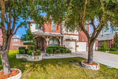 Lewisville Single Family Home For Sale: 739 Marina Vista Drive