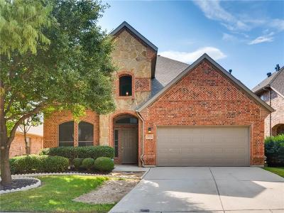 Denton County Single Family Home For Sale: 2544 Flowing Springs Drive