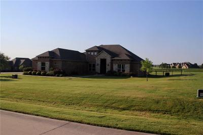 Parker County Single Family Home For Sale: 147 Solano Circle