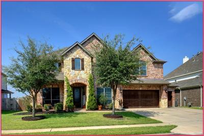Single Family Home For Sale: 10317 Crowne Pointe Lane