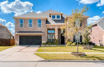 Frisco Single Family Home For Sale: 4323 Leighton Lane