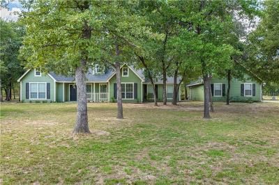 Parker County Single Family Home For Sale: 175 Timberline Trail