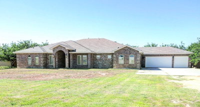 Midland Single Family Home For Sale: 10310 W County Rd 150