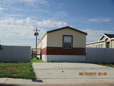 Odessa Single Family Home For Sale: 2407 Van St