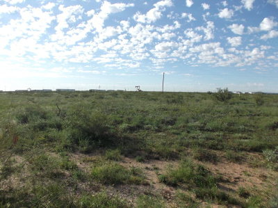 Midland Residential Lots & Land For Sale: Tract 26 Entrada Rd
