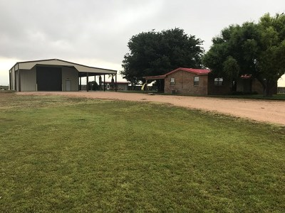 Seminole Single Family Home For Sale: #219 County Rd 205