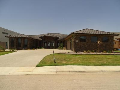 Odessa Single Family Home For Sale: 3105 San Saba Drive