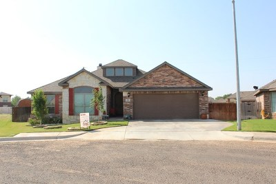 Andrews Single Family Home For Sale: 13 NW Grace Dr