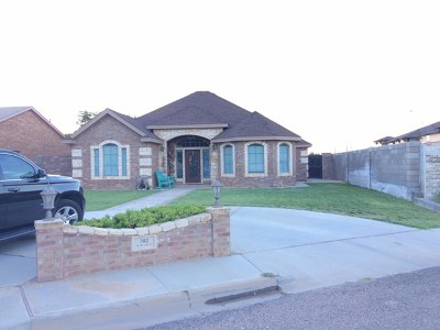 Andrews Single Family Home For Sale: 302 NW Ave. L