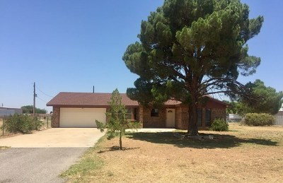 Odessa Single Family Home For Sale: 9060 W 57th St