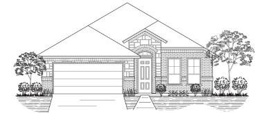 Odessa Single Family Home For Sale: 1807 Boise Dr