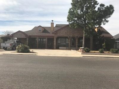 Odessa Single Family Home For Sale: 1104 Del Rio St