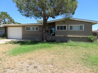 Odessa Single Family Home For Sale: 4302 Winchester Ave