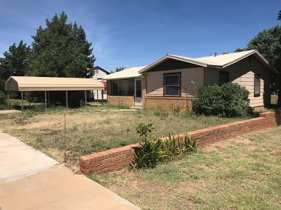 Seminole Single Family Home For Sale: 904 SW Ave D