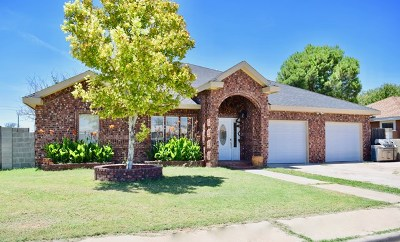Odessa Single Family Home For Sale: 501 Overton Ave