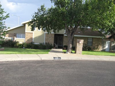 Odessa Single Family Home For Sale: 20 Graves Court