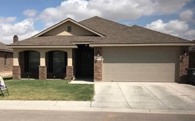 Odessa Single Family Home For Sale: 9302 Agave St