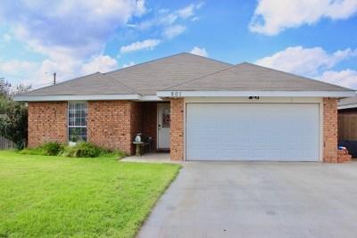 Odessa Single Family Home For Sale: 801 Duke Ave