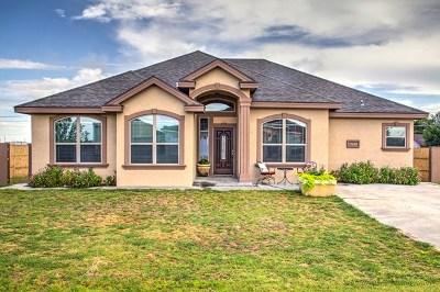 Odessa Single Family Home For Sale: 11640 W Catalpa