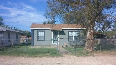 Odessa Single Family Home For Sale: 1311 N Muskingum Ave