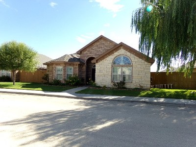 Odessa Single Family Home For Sale: 2804 Anice