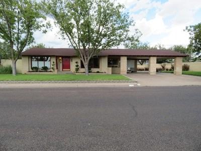 Odessa Single Family Home For Sale: 3008 Windsor Dr
